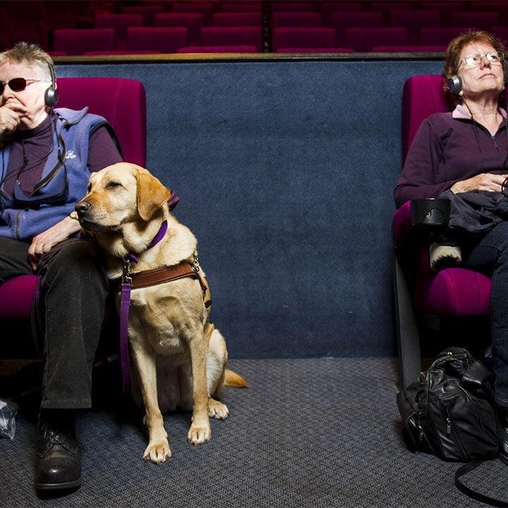 Image Description:Two middle-aged women seated in a movie theater, one with a guide dog and the other with a white cane, sit with head phones on, absorbed in audio description. Photo: Rohan Thomson, courtesy of The Canberra Times