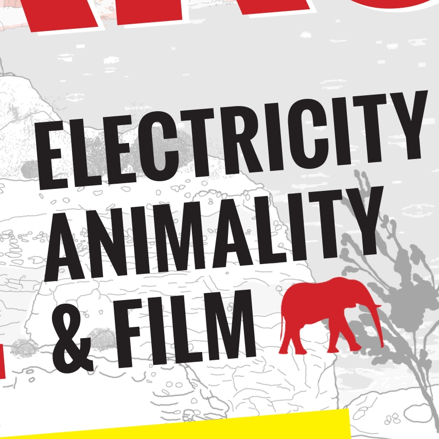 SPARKS OF LIFE: ELECTRICITY, ANIMALITY, AND FILM