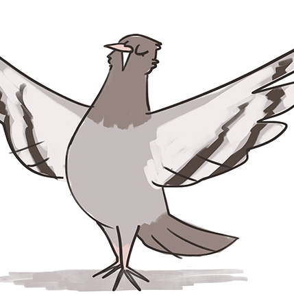 Drawing of a Pigeon which is the logo for The Student Animation League