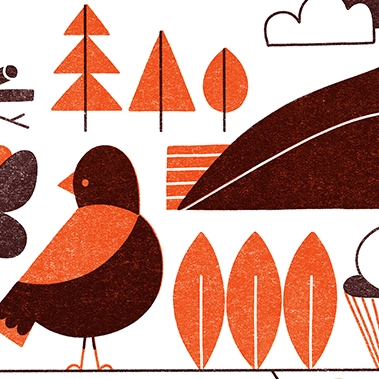 Elizabeth Hargrave poster featuring brown and orange hand drawn birds.