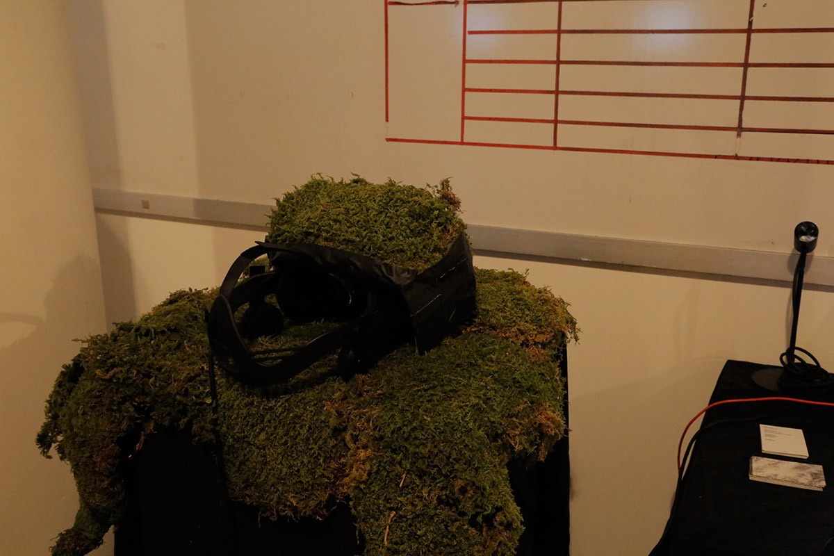 VR glassses laying on a bed of moss.