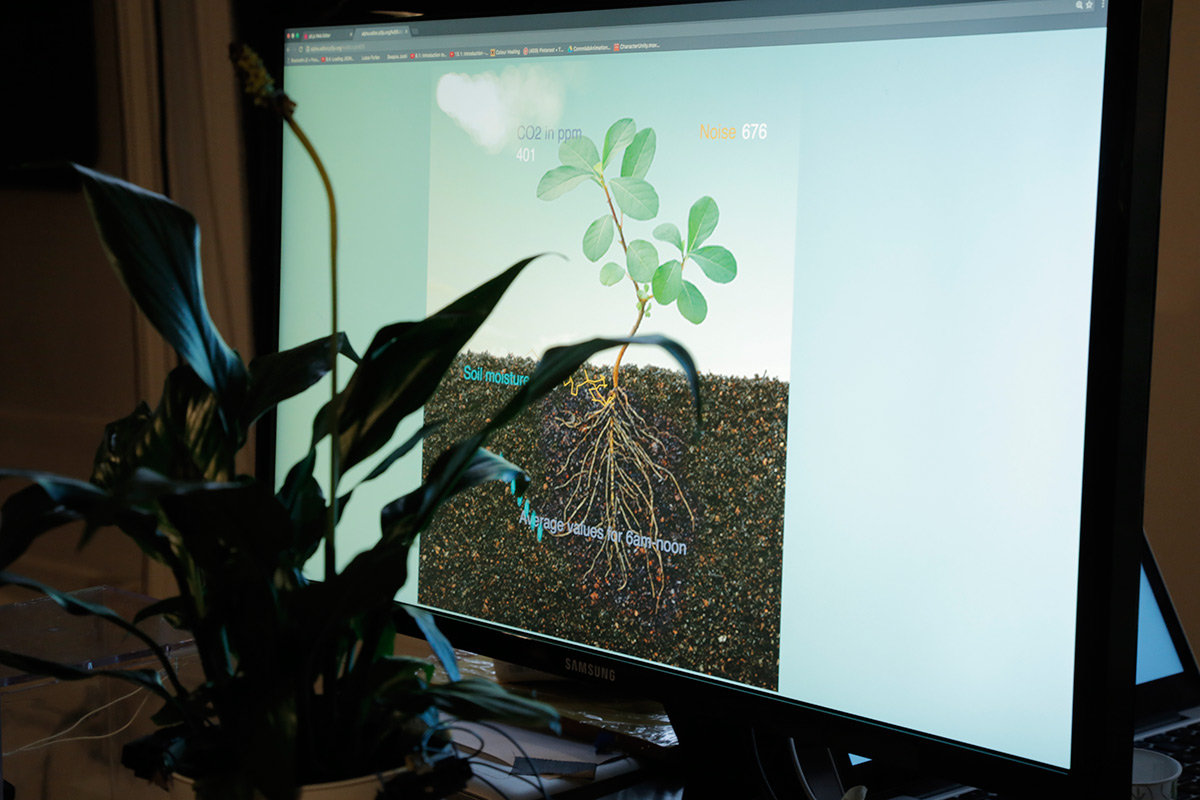 A real plant in front of a monitor showing a plant with roots and status of the plant