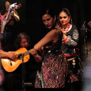 Flamenco Performance