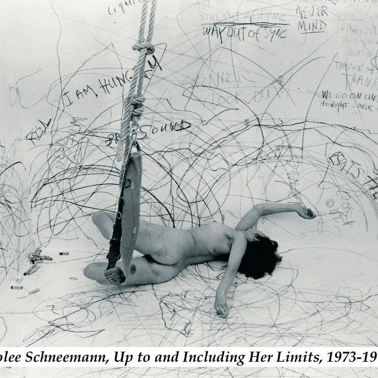 Carolee Schneemann: This Kinetic Life