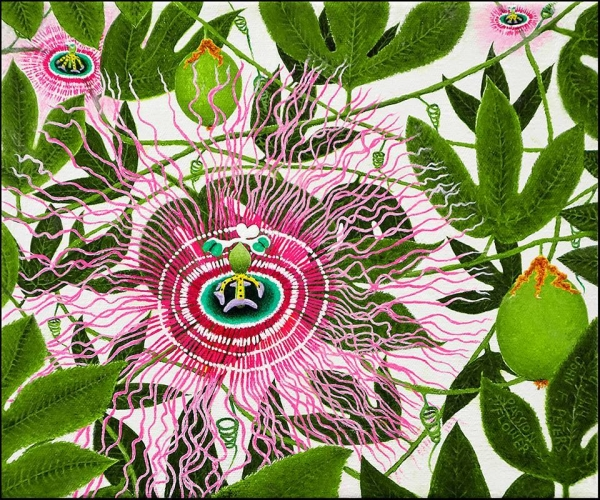 """Passion Flower"" (oil on canvas) by John Francis Peters"