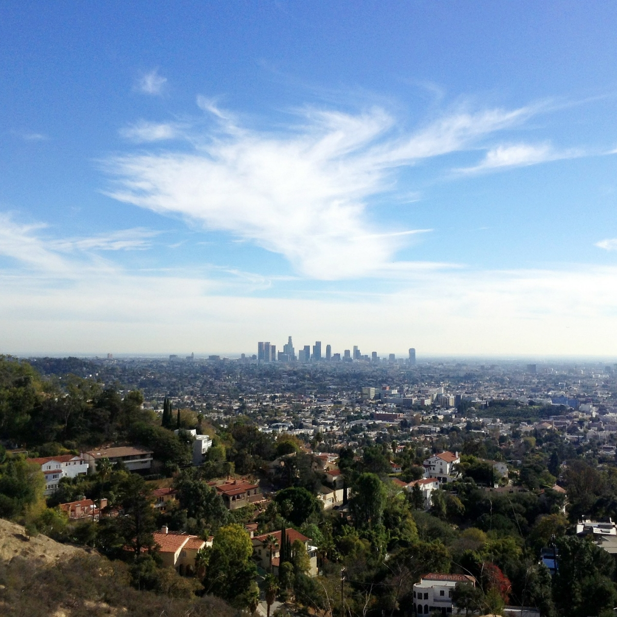 Los Angeles skyline in the distance
