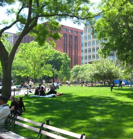 A sunny day in Washington Square Park